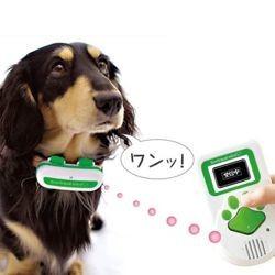 BowLingual aboiements chien