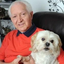 un chien sauve son maître de 81 ans
