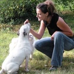 victoria comportementaliste animalier