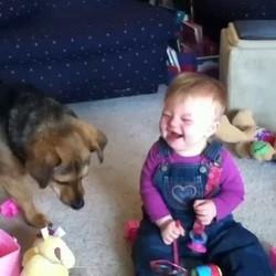 video drole bébé chien bulles