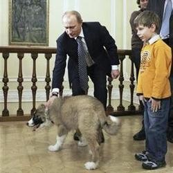 vladimir poutine chien buffy