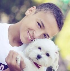 il vole son chien chez le vétérinaire pour le sauver