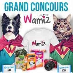 concours wamiz anniversaire 3 ans