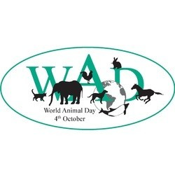 journée mondiale des animaux, world animal day