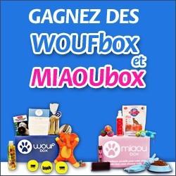 Woufbox Miaoubox