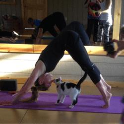 chats yoga