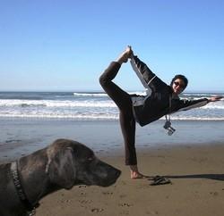 yoga avec son chien doga