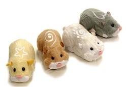 hamster zhu zhu Pets