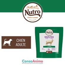 Testez NUTRO™ Grain Free à l'agneau avec votre chien adulte