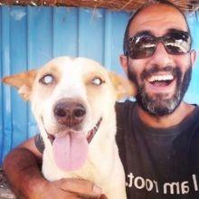 Il sauve un chien aveugle de la rue : quand il se rend au refuge, la réaction du chien donne les larmes aux yeux !