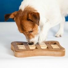 5 jouets pour (enfin) découvrir si votre chien est un génie !