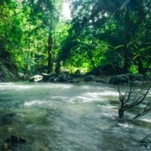 Il se promène le long de la rivière : ce qu'il aperçoit dans l'eau lui fait froid dans le dos