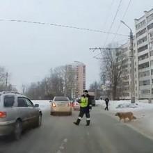 En Russie, ce policier arrête les voitures pour aider un chien à traverser