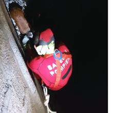À Ajaccio, des pompiers héroïques sauvent une chienne tombée de la jetée