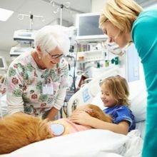 Un hôpital à Lyon va proposer la thérapie assistée par animal à des patients en réanimation