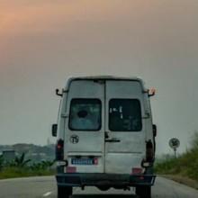 Le conducteur de la camionnette est tellement abasourdi par l'apparence d'un chien qu'il doit s'arrêter