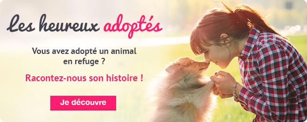 Heureux animaux adoptés