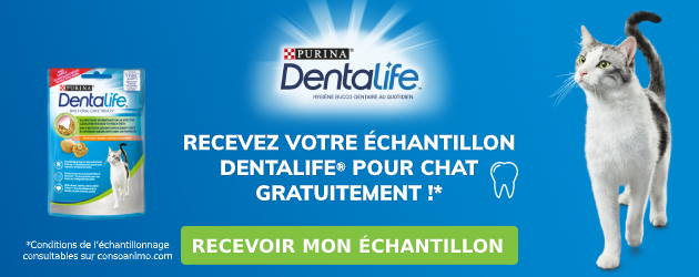 Dentalife Chat - Echantillonnage