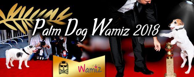 Palm Dog Wamiz 2018