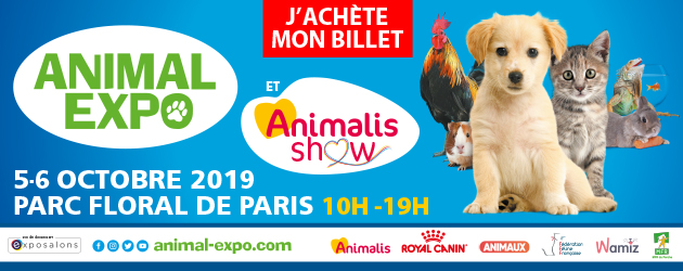 salon animal expo 2019