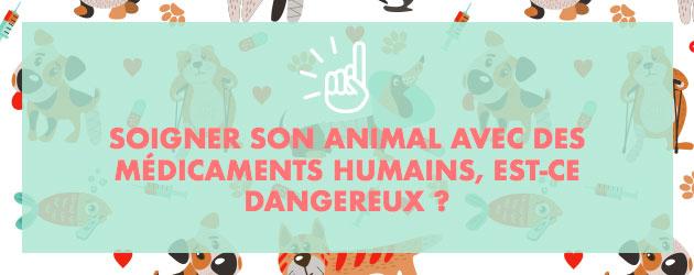 Soigner animal médicaments humains