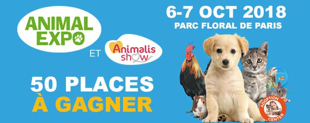 Concours : places à gagner pour le salon Animal Expo