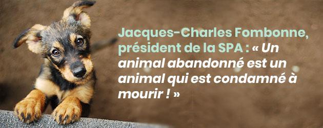 Interview de Jacques Charles Fombonne, président de la SPA