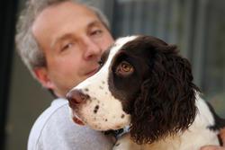 punir recompenser chien