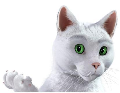 """Résultat de recherche d'images pour """"chat feu vert"""""""