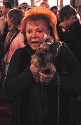 De quelle race est le petit chien de Régine ?