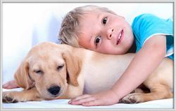 Le Labrador est un merveilleux compagnon pour les enfants ?