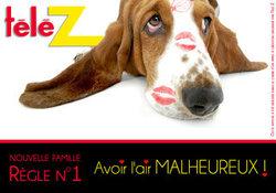 Quelle est la race du célèbre chien de Télé Z ?