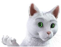 Comment se nomme le chat de la marque Feu Vert ?