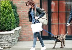 Comment s'appelle le chien de Kristen Stewart et Robert Pattinson ?