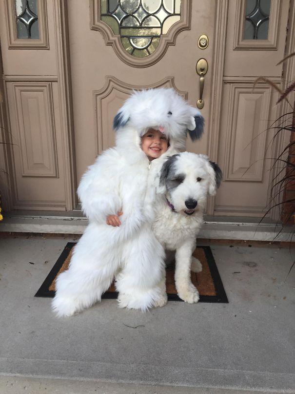 chien enfant