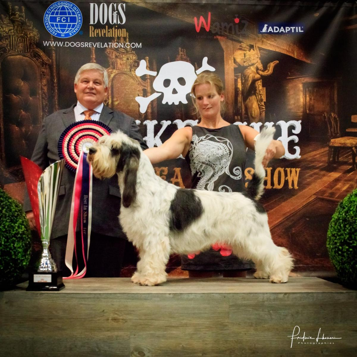 Dunkerque North Sea Dog Show