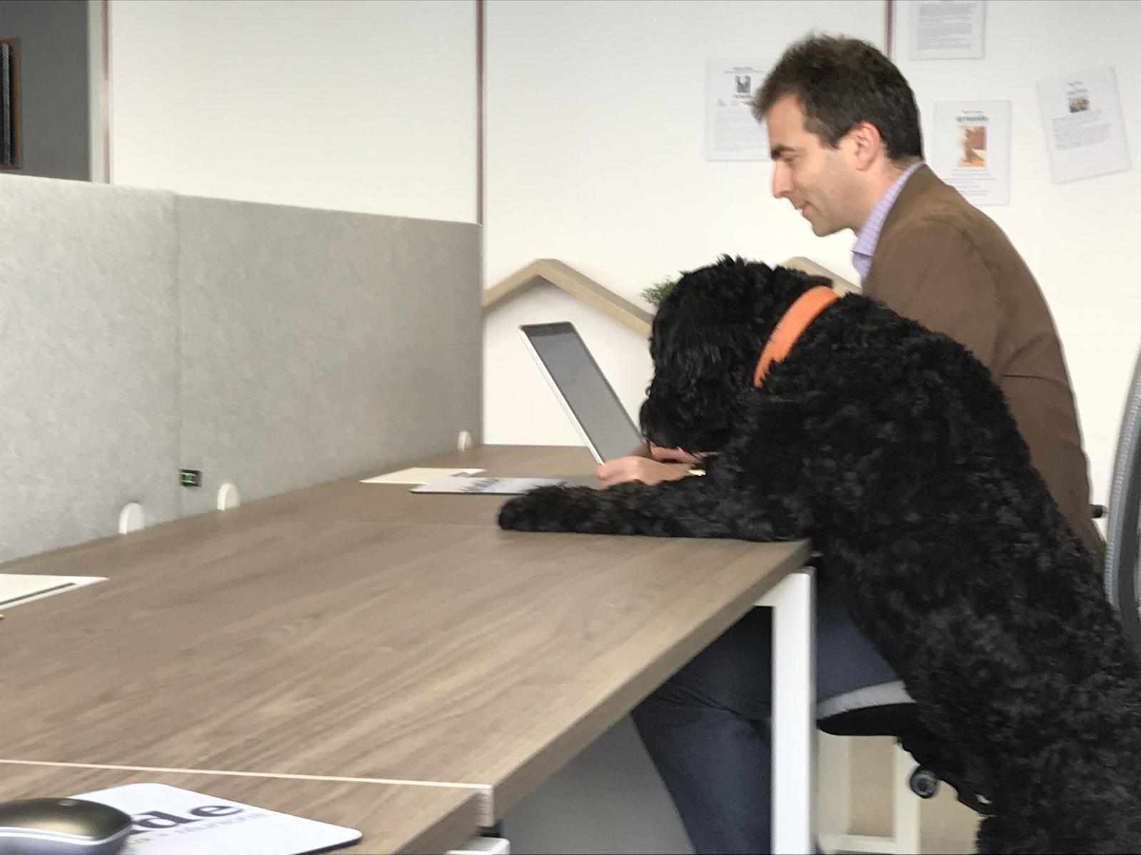 Espace aristide coworking