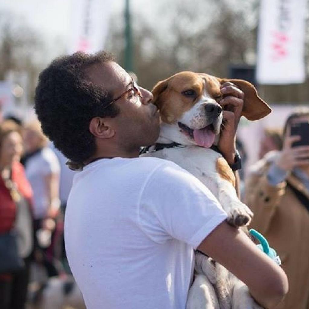 MJ beagle wamiz run