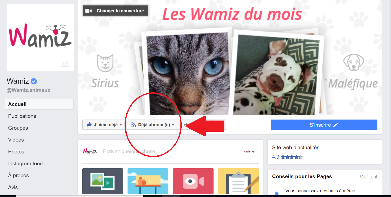 wamiz site facebook