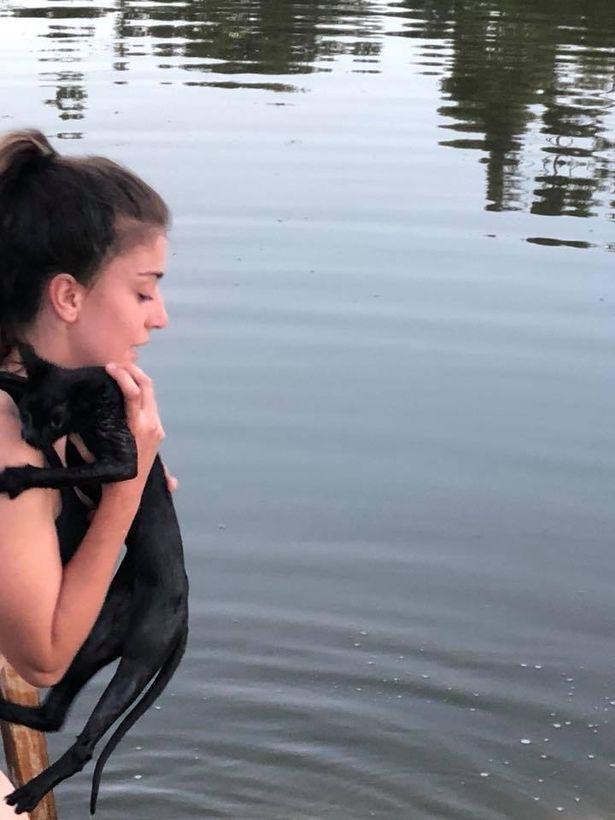 chat noir noyade