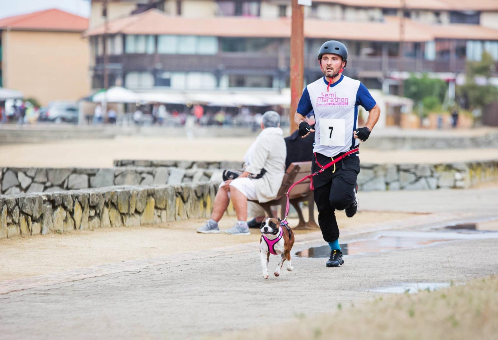 cani-triathlon
