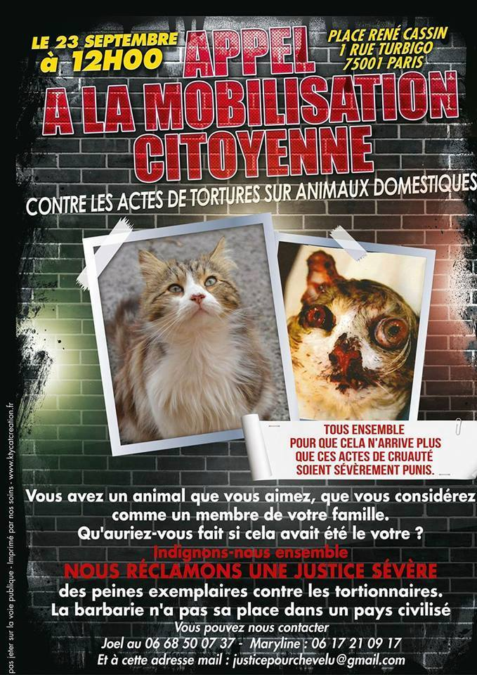 manifestation cause animale paris
