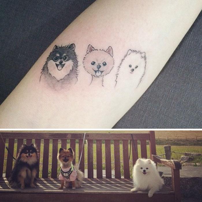 tatouage chien
