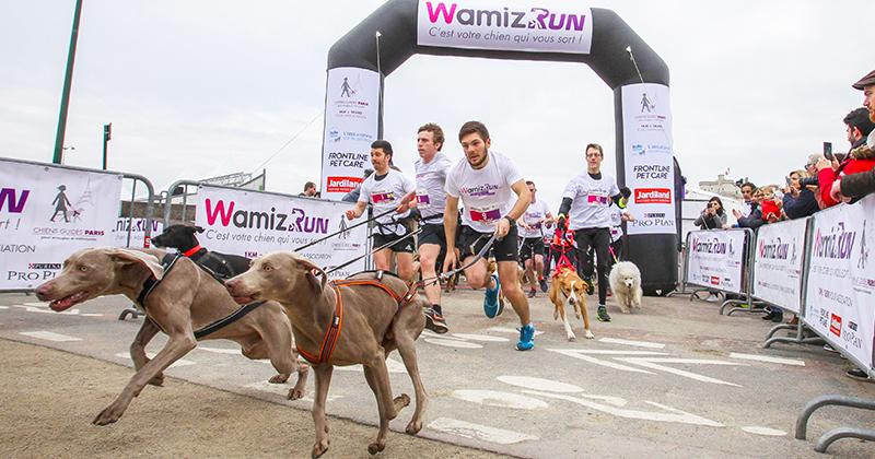 wamiz run