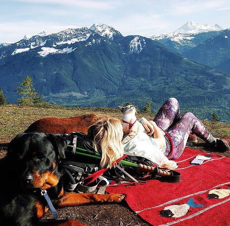 10 bonnes raisons de voyager avec son chat ou son chien