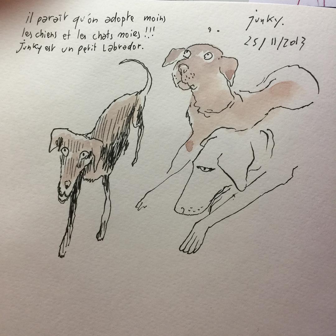 les chiens de la SPA de Gennevilliers par Joann Sfar