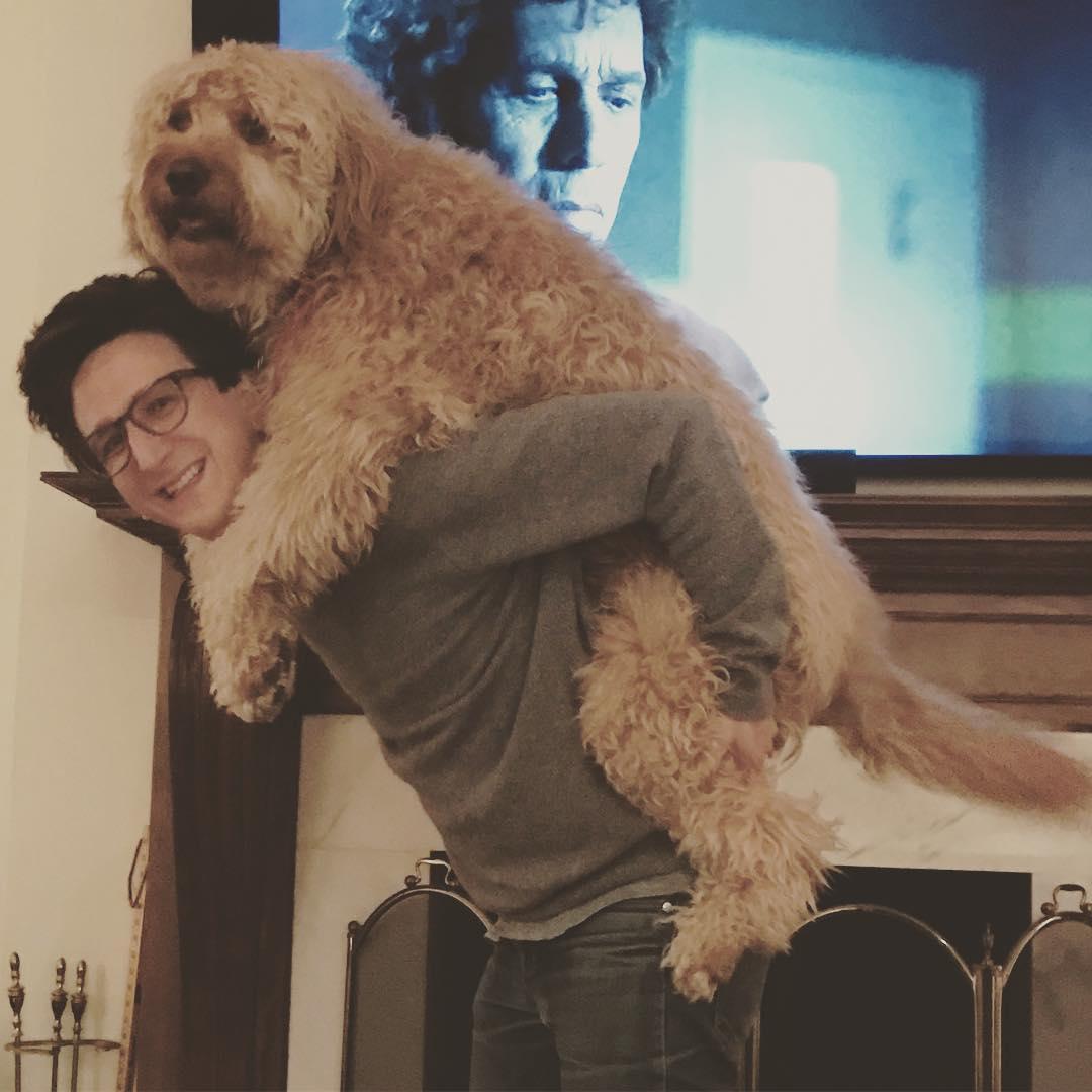 Cette immense chienne (et ses photos Instagram) va vous mettre de bon poil pour le reste de la journée