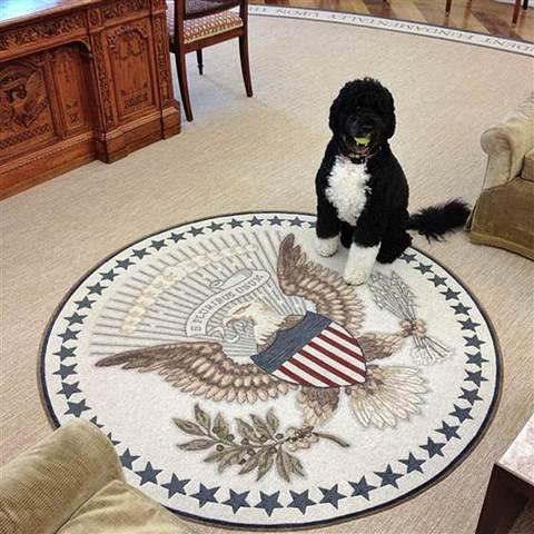 bo obama maison blanche