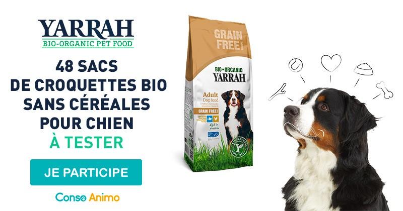 Testez les croquettes bio sans céréales pour chien de Yarrah !