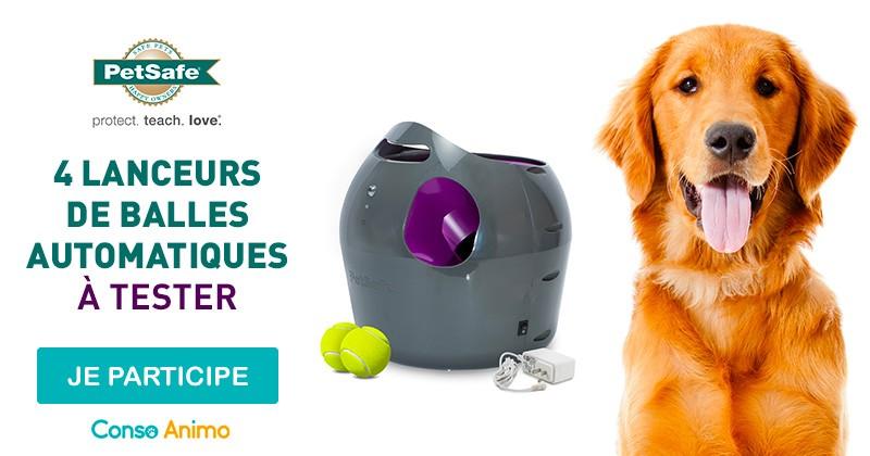 Testez le lanceur de balles automatique pour chien de PetSafe®!